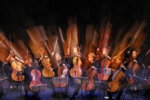 françois salque; classique; violoncelle; musique; concert